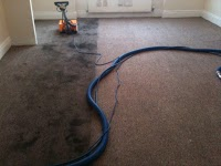 Magic Carpets Cleaning Services 958113 Image 1