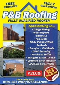 P and B Roofing 975958 Image 0