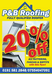 P and B Roofing 975958 Image 1