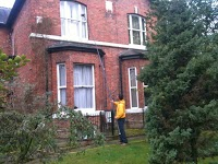 SK Window Cleaning 979499 Image 6